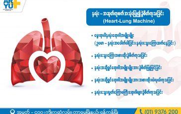 Heart – Lung
